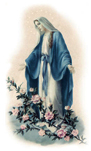 Mary Immaculate, Mother of God